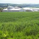 Biowert AG logo