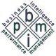 BIPM Consulting, Inc. logo