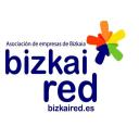 BIZKAIRED, Asoc de Empresas de Bizkaia en Red logo