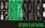 BizSpice India Pvt. Ltd. logo