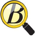 BizView.com logo