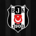 Beşiktaş Jimnastik Kulübü logo icon