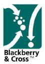 Blackberry&Cross on Elioplus