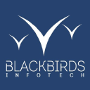 BLACKBIRDS srl logo
