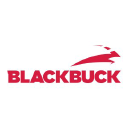 Black Buck logo icon
