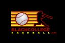 Black College Baseball.com logo
