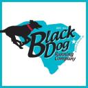 Black Dog Running Company logo