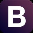 BlackPepper InfoServices Pvt Ltd logo