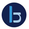 Blake Newport Associates logo