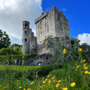 Blarney Castle and Gardens logo