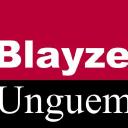 Blayze Unguem Ltd logo