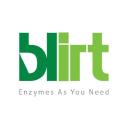 BLIRT S.A. logo