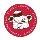 — Blog Daily Herald logo icon