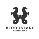 Bloodstone Consulting Limited logo