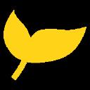 Blooming Minds WA Pty Ltd logo