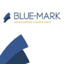 Bluemark Management Consultants logo