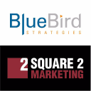 BlueBird Strategies logo