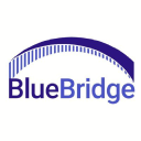 BlueBridge Networks logo