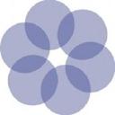 Blue Camas Consulting logo