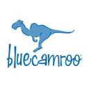 BlueCamroo Inc. logo