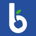 Blue Cherry Online Marketing logo
