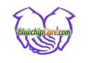 BluechipCare.com, Inc. logo