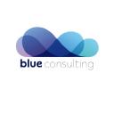 Blue Consulting on Elioplus