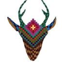 Blue Deer Center logo