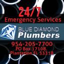 Blue Diamond Plumbers logo