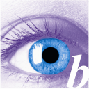 Bluefire Consulting logo icon