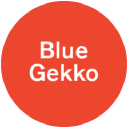 Blue Gekko | more than public relations logo