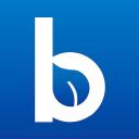 Blueleaf.com logo