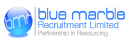 Blue Marble Recruitment Limited logo