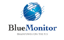 Blue Monitor Systems logo