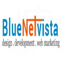 Blue Net Vista Inc.