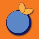 Blue Orange Games logo icon