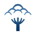 Bluepark logo icon