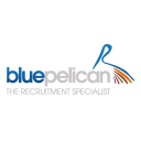 Blue Pelican logo icon