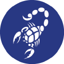 Blue Scorpion Limited logo