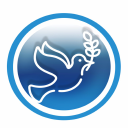 Blue Seven Services logo