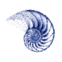 Blueshell Limited logo