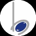 BlueStone 3D Labz Pvt Ltd (earlier known as BlueStone Consultancy Services Pvt Ltd) logo