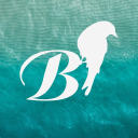 Bluetit London logo icon