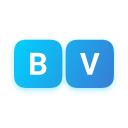 Blue Vision Labs Company Logo