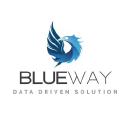 Blueway Software logo