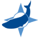Blue Whale Logistics LTD logo