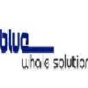 Blue whale solutions logo