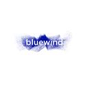 Bluewind Embedded Systems Design logo