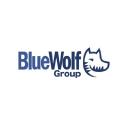 Bluewolf Consulting SC logo