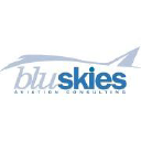 BluSkies Aviation Consulting logo